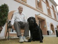 ancianos-y-perros-b