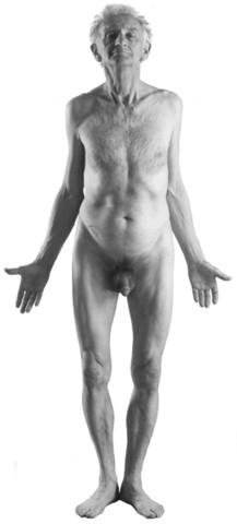 cuerpo1