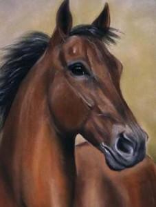 retrato-caballo